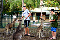 IMG_5567-boys-with-kangaroo
