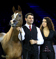 2010 Salon Du Cheval - Jr. Mares
